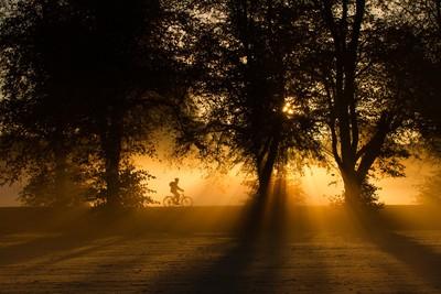 Misty commute