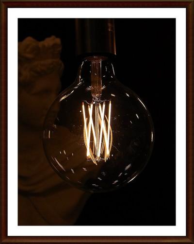 RIMG3259 bulb