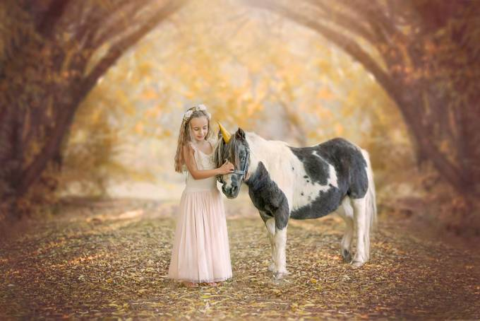Fairy Tales by PaigeLaroPhotography - Fantasy In Color Photo Contest