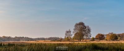 Panorama Autumn Bergerheide