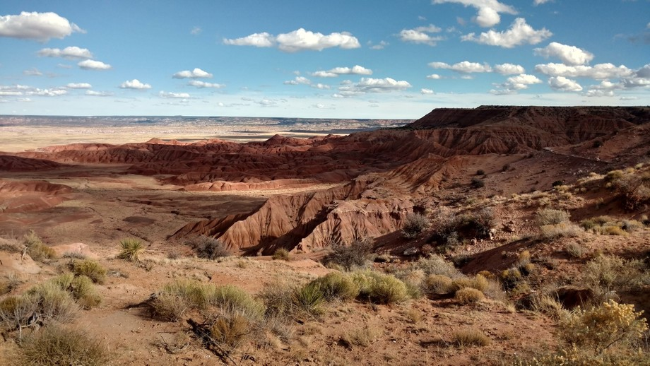 My favorite place to take pictures is on the Navajo Reservation. The land is beautiful and one of...