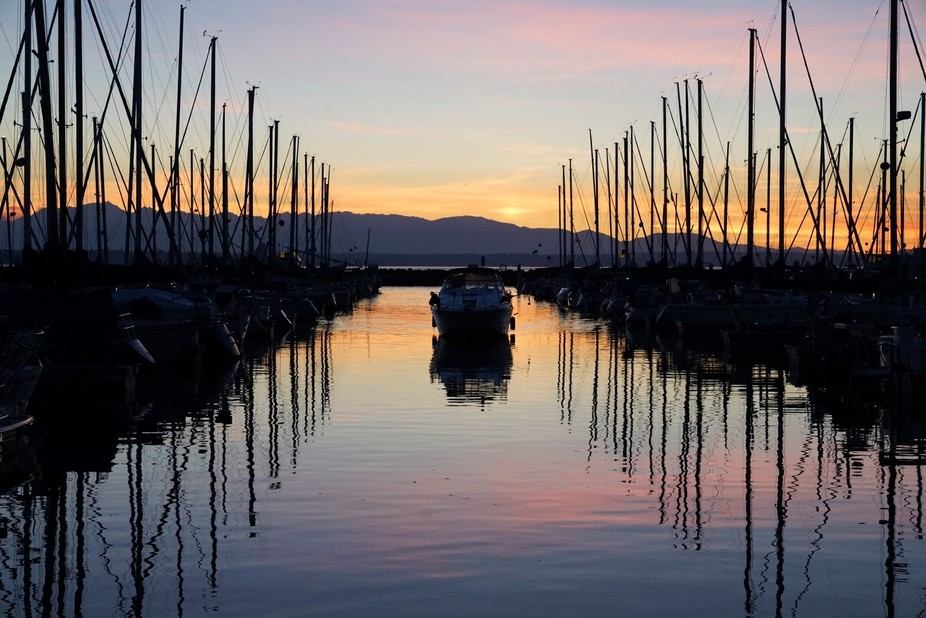 This was taken over the summer at the Shilshole Bay Mariana in Seattle, WA. I saw this beautiful ...