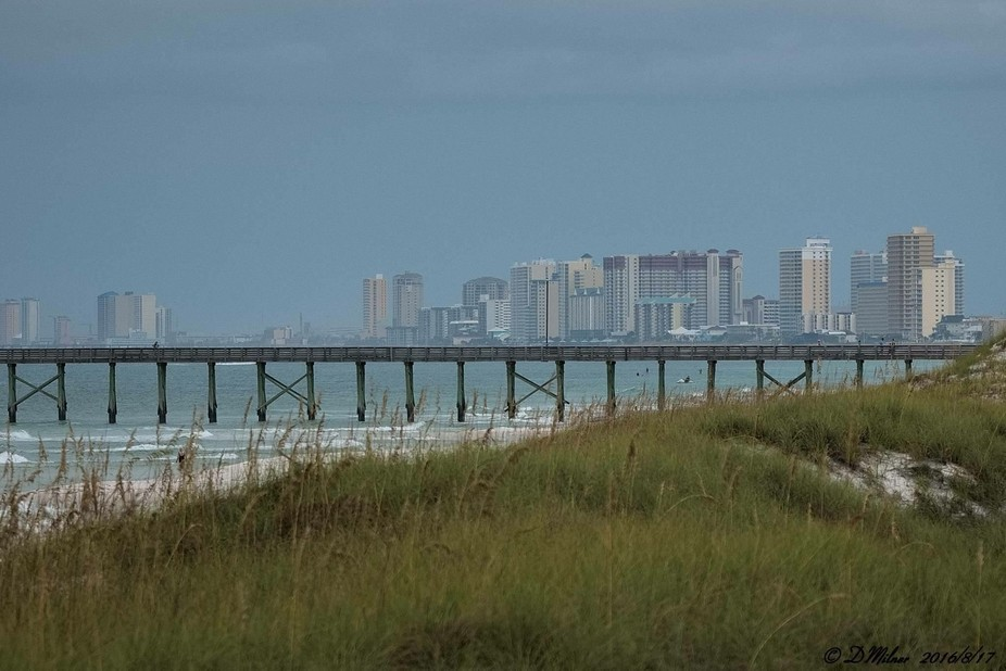 Panama City Beach Florida from St. Andrews State Park