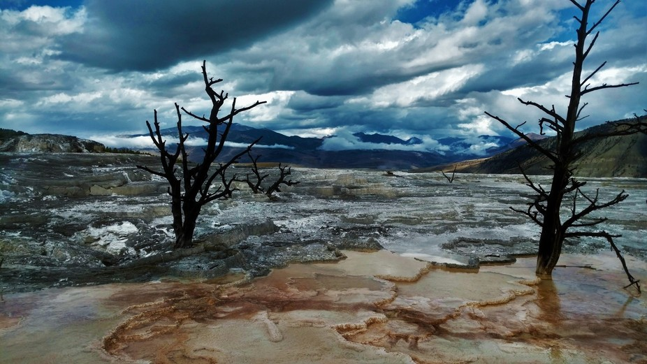 Taken by the Mammoth Springs in Yellowstone National Park. The ground looks like it is cracked an...