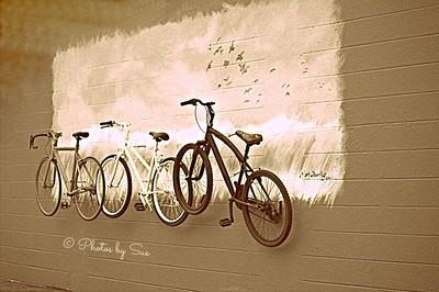 Bicycle Trio-Sepia