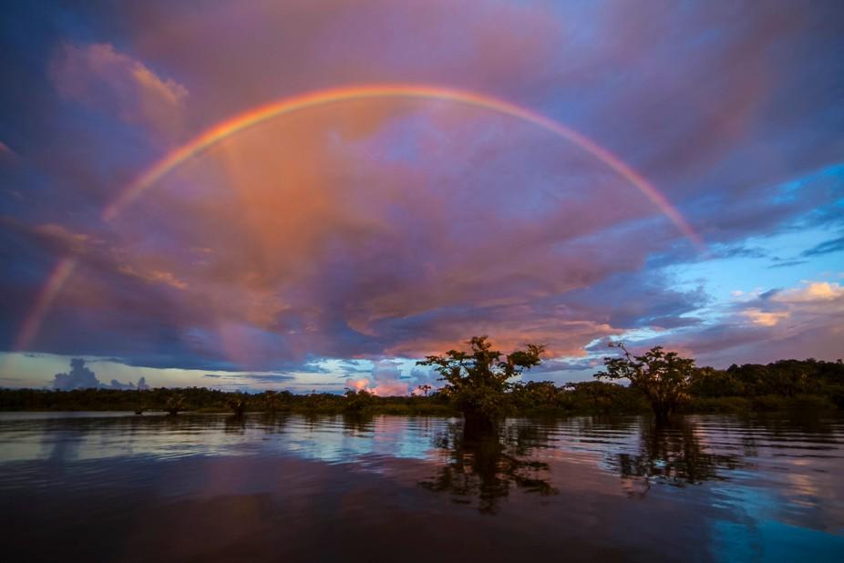 Amazon River Rainbow