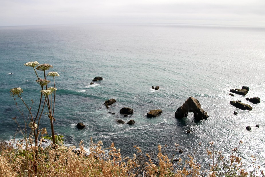 Pacific Coastal view, near Fort Bragg, CA