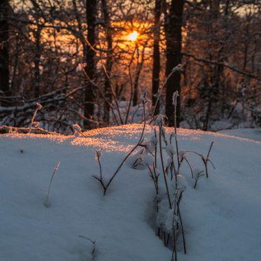 Snö och Sol