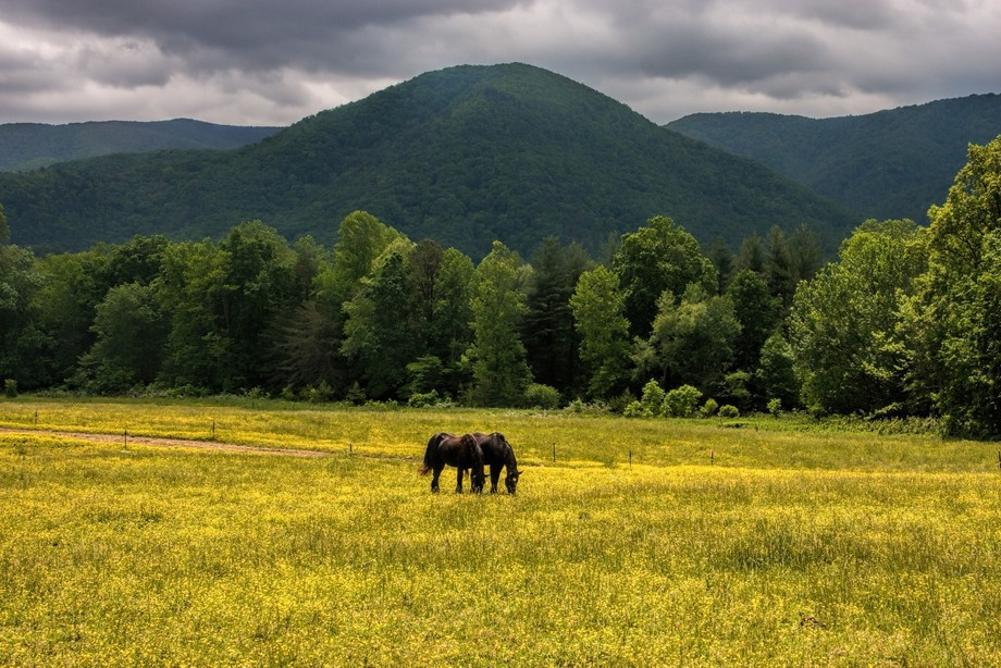 The beautiful mountain backdrop at Cades Cove