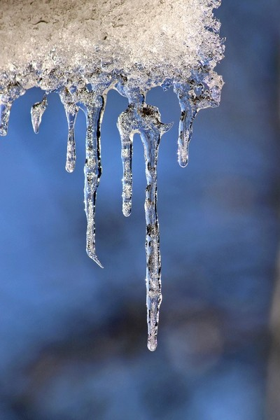 Reflection in Icicles