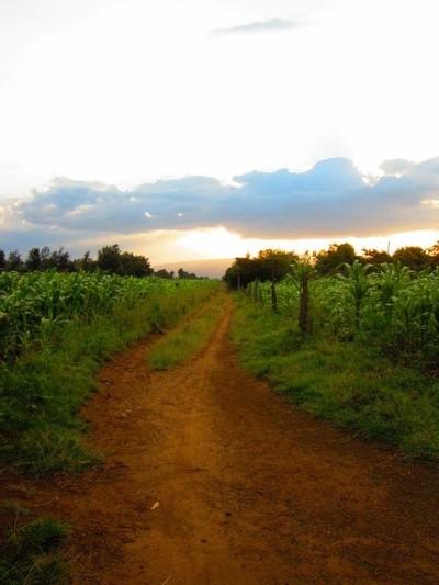 Dirt Road in Kenya