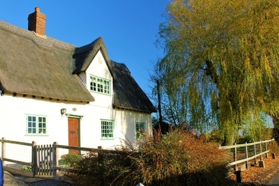Thatch and blue sky's