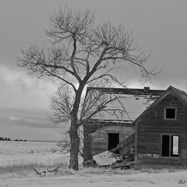 Old homestead b&w