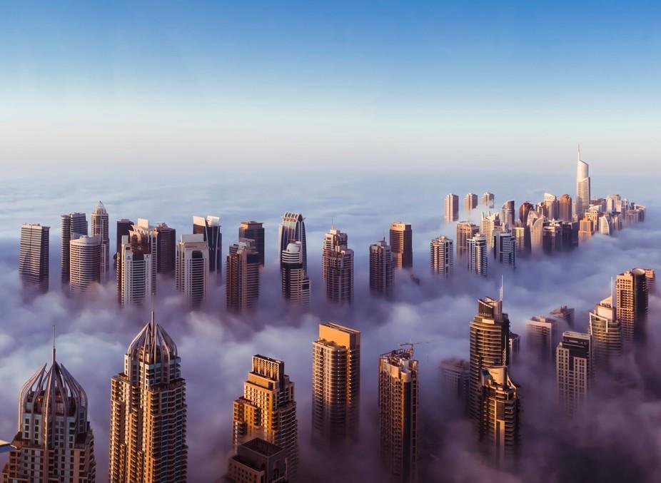 City Views Photo Contest Winners