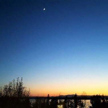 blue n' moon