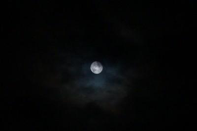 Blood Moon (80)