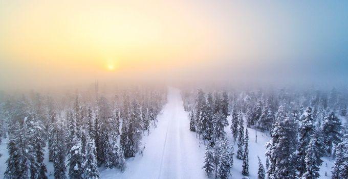 Freezing fog by timoksanen - Overexposure Photo Contest