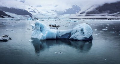 Iceberg Field