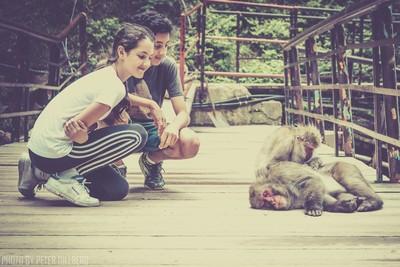 Meeting Macaque