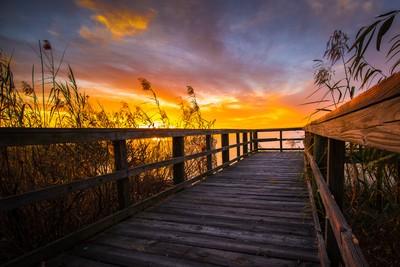 Goodnight Sun ... over Mobile Bay