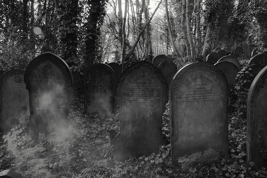 A really old grave yard almost hidden  I a woodland of trees