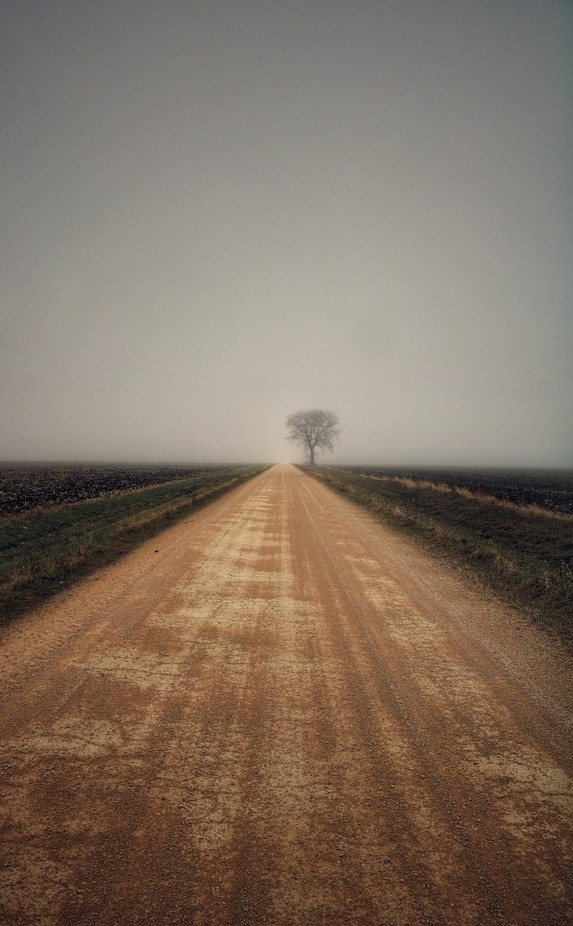 Road to nowhere  by ErikDerbyPhotography - The Brown Color Photo Contest
