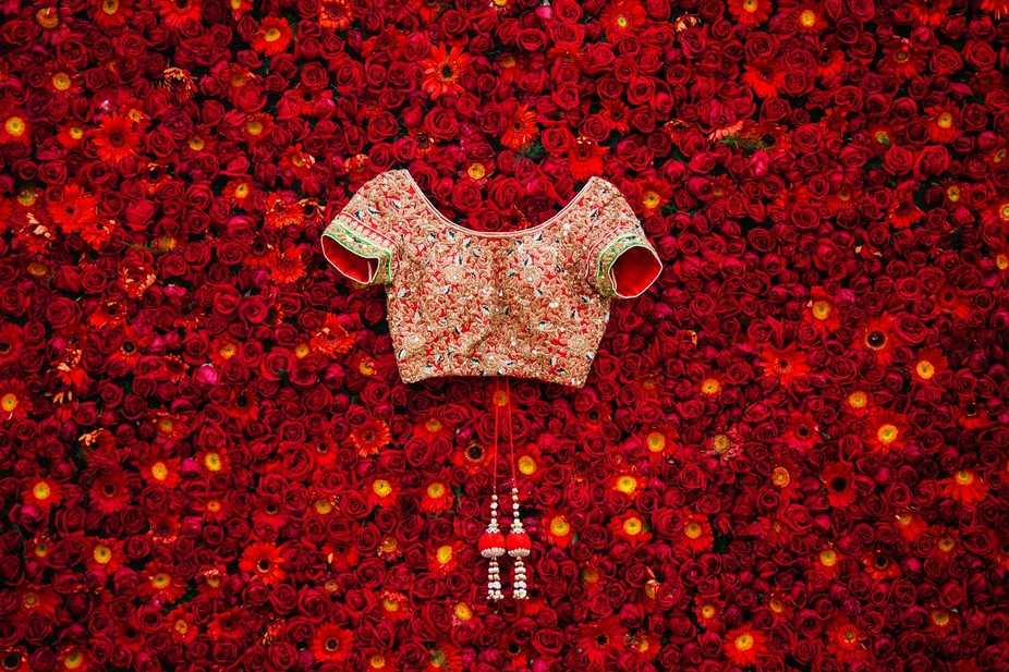 The Indian Wedding Blouse on a bed of roses