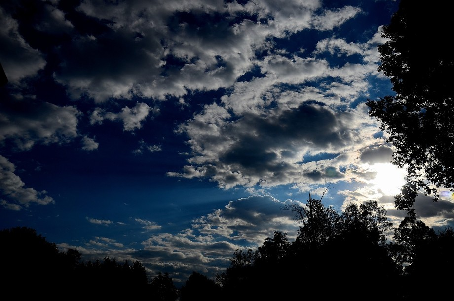 A morning view from my porch.  On this morning the sun shines boldly that  produces strong rays n...