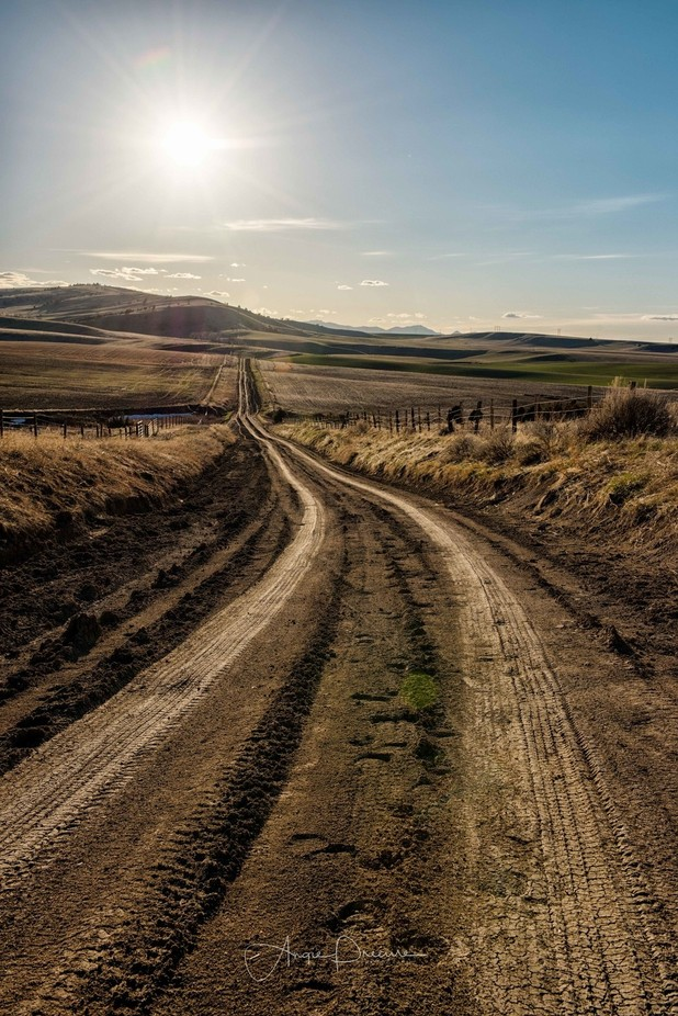 Axtell Aceny Road  by Aflorer - Country Roads Photo Contest