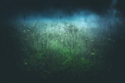 soft mist creeping through