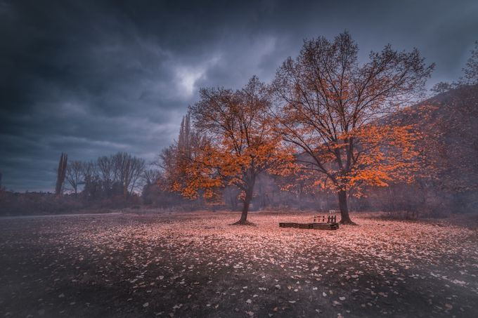 Autumn Meeting by chrismladenov - Fall 2017 Photo Contest