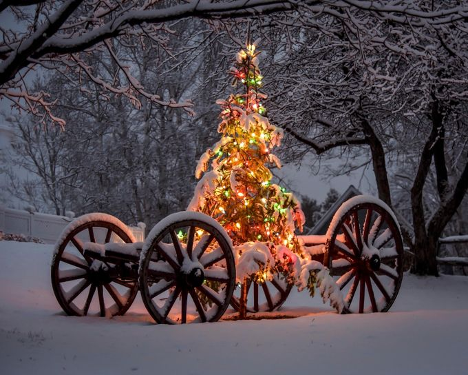 It's Beginning to Look A Lot Like Christmas by CRamsay - Holiday Lights Photo Contest 2017