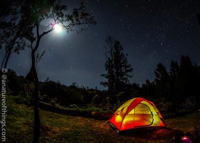 campsite salinardo