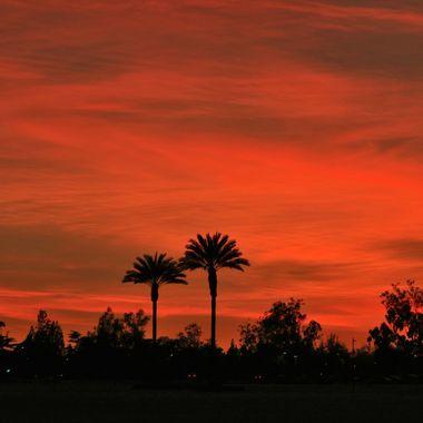 Southern California Sunset IMG_0120
