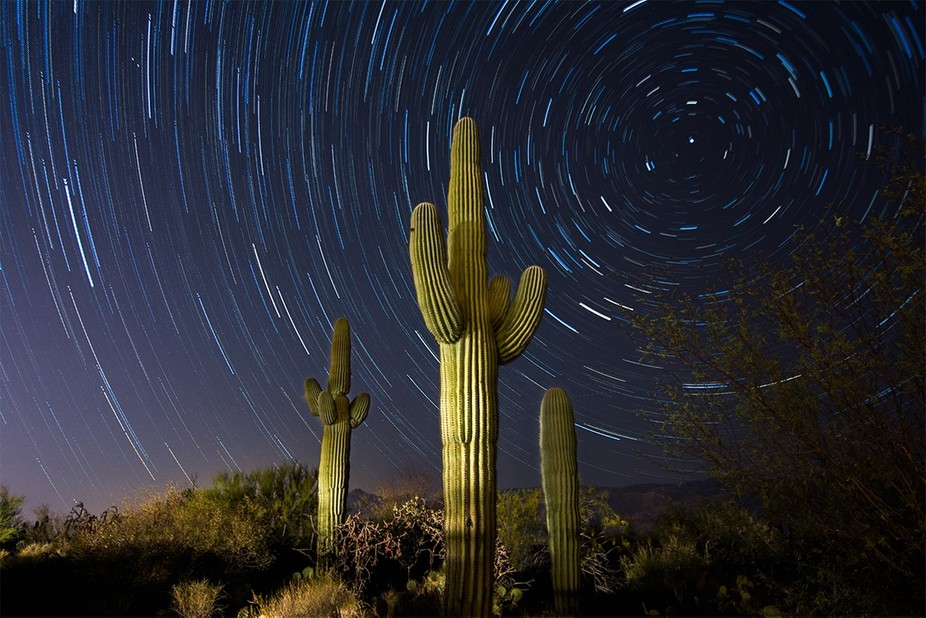 My first star trails photo, taken on the outskirts of Tucson, Arizona. Little bit of light painting.