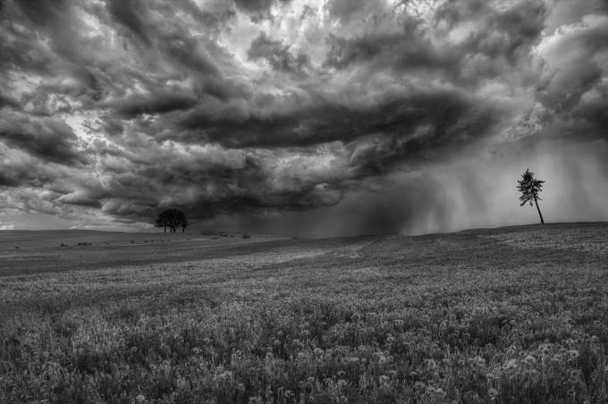 Under the Storm by vitorsantos_9001 - Black And White Landscapes Photo Contest