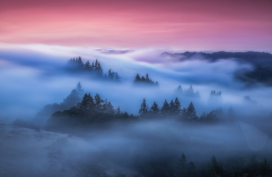 Rolling fog at Mt Tamalpais just after sunset