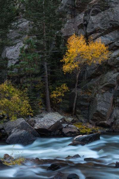 Clear Creek Long Fall- (IMG_3622)