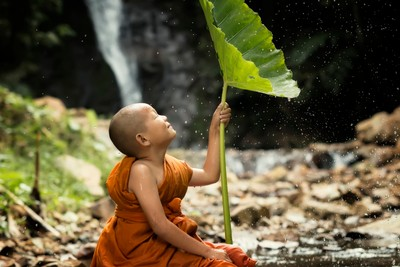 Novice is in a fresh nature.