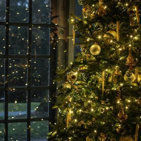 Christmas tree, lights, reflection, ornaments, decorations, holiday