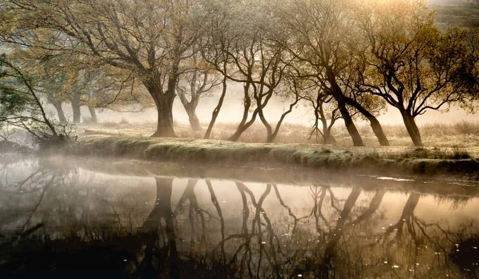 Misty Autumn by the river  by wynnowen - Fall 2017 Photo Contest