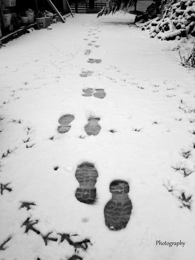 Footprints_In_The_Snow