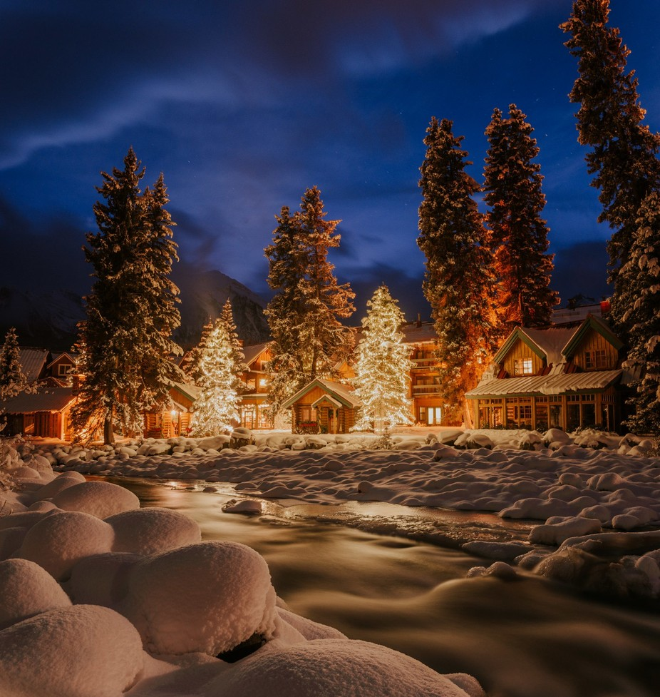It's starting to look a lot like Christmas by CelestineAerden - Orange Is The Color Photo Contest