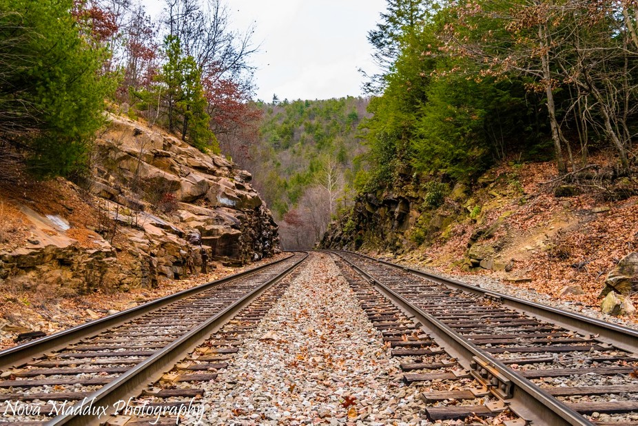 This was taken on the Lehigh Gorge Scenic Railroad during a recent hike through Glen Onoko Falls ...