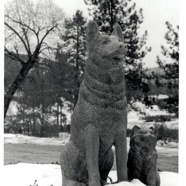 Pet Sanctuary, Living Free pet rescue in Idyllwyld, CA. The statue of a dog and cat out front is breathtaking surrounded by snow.   Many of my photos are for sale, please click over to my photography store and take a peek. I have something for just about anyone who loves nature.
