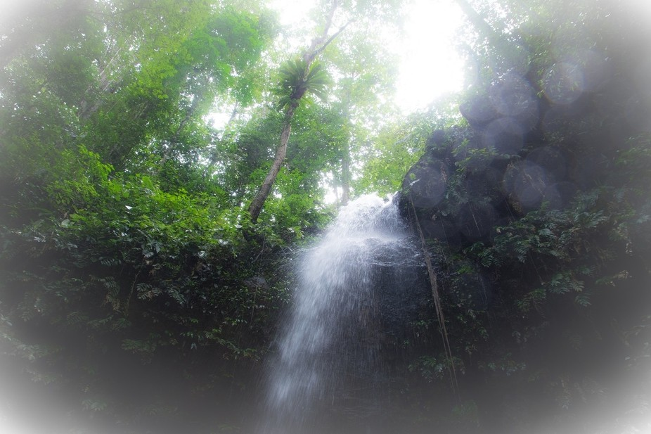 trip to Suriname...