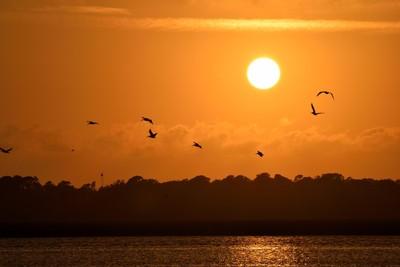 sunset-1791441 (1)