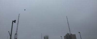 Foggy Day In Atlantic City 4