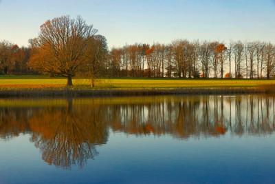 Blickling Lake November