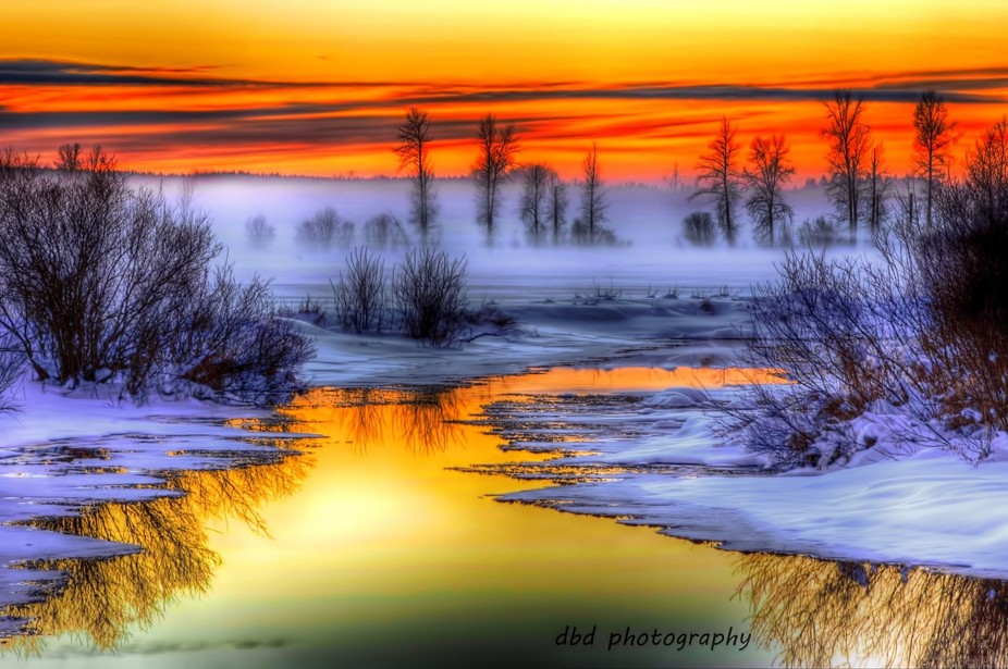 Sun setting in the fog over Hay Creek, Giscome, in the Central Interior of British Columbia, Canada.